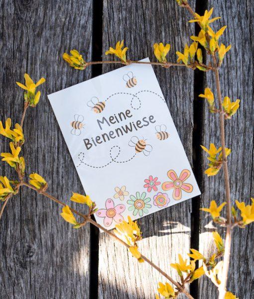 Bienenwiese Margreblue